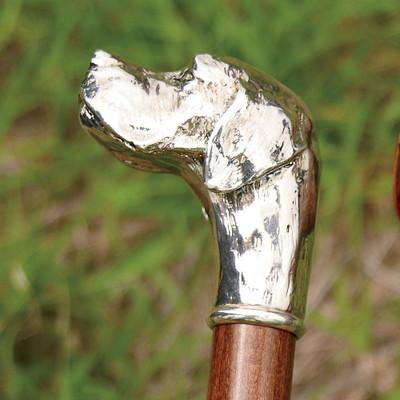 Lab Walking Stick