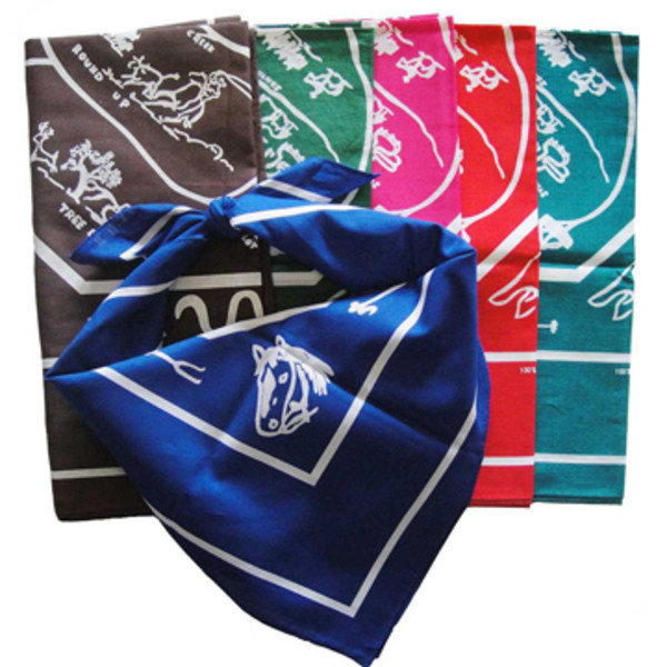 multiple colored western hankerchief